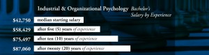 Industrial & Organizational Psychology - Bachelor's Degree Salary by Experience