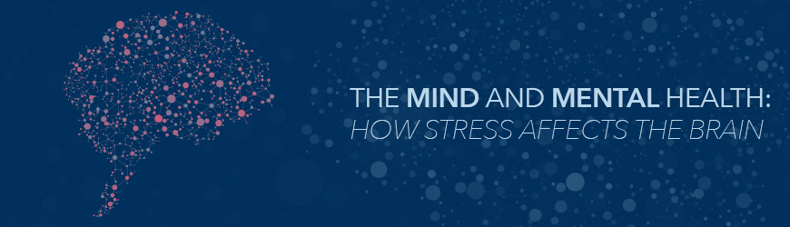 There are numerous risks related to stress, but specifically how stress affects the brain is worth noting since it can change neural pathways and other physiology.