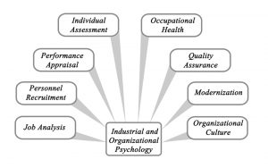 The Role of Industrial and Organizational Psychology in the Workplace
