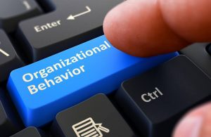 What to Expect in a PhD in Organizational Psychology Program | TUW.edu