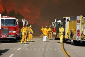 Opportunities in Emergency Disaster Management